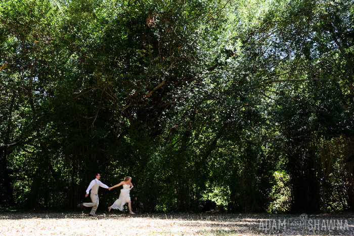 backyard wedding, bay area wedding photographer, beloved collective photographer, branson high school wedding photographs, joannie liss events, kent wedding, marin county wedding, marin wedding, marin wedding photograper